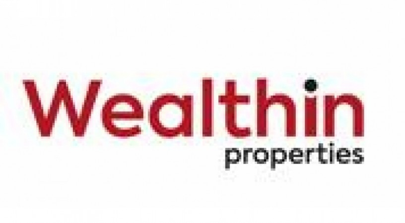 Wealthin Properties