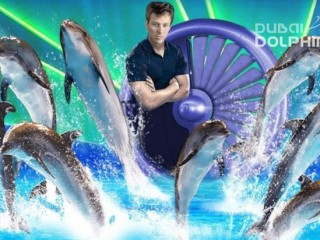Exotic Dolphin and seal Show at Dolphinarium
