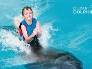 Shallow water swimming experience with Dolphins at Dolphin Planet- Dubai Dolphinarium