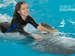 Meet & Greet with dolphins (Family tickets) at Dubai Dolphinarium