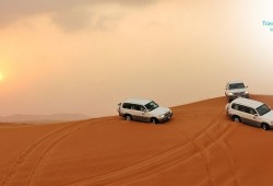 Morning Desert Safari by Travel Guide Tourism for AED 119