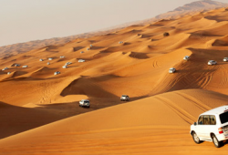 Abu Dhabi Desert safariwith transfer by Travel Guide Tourism starts for AED 79