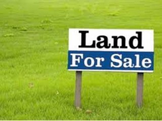 100000 square feet industrial land for sale in Dubai Investment Park