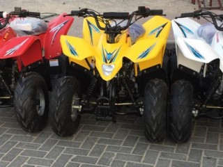 Atv Quad Bike 80cc Taiwan made fully Automatic