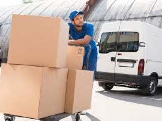 Safer Move by Palm jumeira  Beach Movers 0508853386