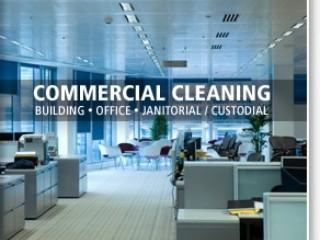 MAMMOTH SERVICE IN CLEANING SERVICE--055.8426325