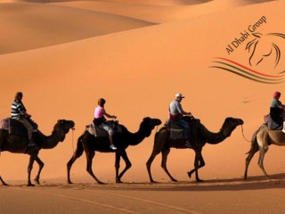 Desert Camel Riding with Al Dhabi Group starts from AED 179