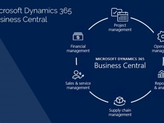 Role of Dynamics 365 Finance and Operations