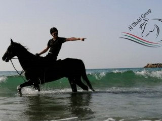 3 hrs Horse Riding on the Beach at AED 750