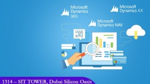 Role of Microsoft Dynamics NAV in a business